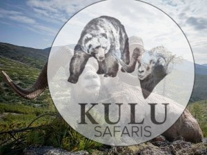 Snow sheep hunt with Kulu Safaris in Magadan, Russia