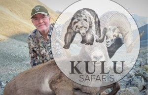 Snow sheep hunt in Magadan Russia with Kulu Safaris