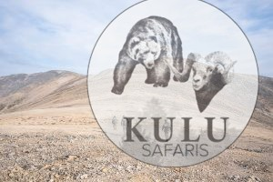 Kulu Safaris hunting