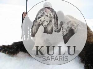 kamchatka brown bear hunts