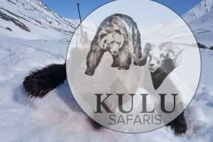 Охота на камчатского бурого медведя с Кулу Сафарис в Магадане