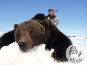 Brown bear hunt in magadan, Russia