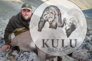 Mikhail Rudakov snow sheep hunting, Magadan, Russia, Kulu Safaris