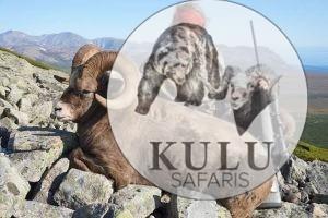 Jim Shockey in the mountains of Magadan with his snow sheep trophy, Kulu Safaris