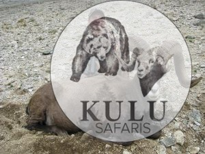 Miles Voloshin hunting in Magadan with Kulu Safaris