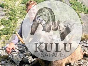 Bryan Harlan snow sheep hunting in Magadan Russia with Kulu Safaris