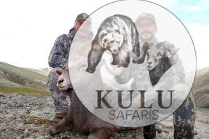 Sergei Rudakov, Enrique Velasco, hunters, game, snow sheep hunting in Magadan, Russia with Kulu Safaris