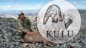 Snow sheep hunting in Magadan, Russia with Kulu Safaris
