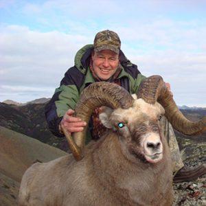 Snow sheep hunt in Magadan Russia with Kulu Safaris